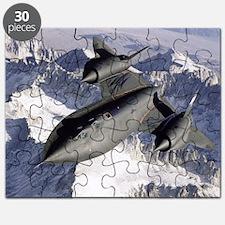 SR-71 Blackbird Puzzle