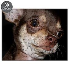 Cute Chihuahua Puzzle