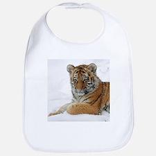 Tiger_2015_0103 Bib