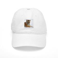 Tiger_2015_0104 Baseball Cap