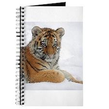 Tiger_2015_0104 Journal