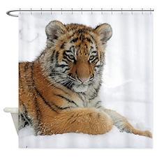 Tiger_2015_0104 Shower Curtain