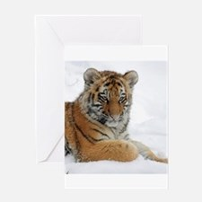 Tiger_2015_0104 Greeting Cards