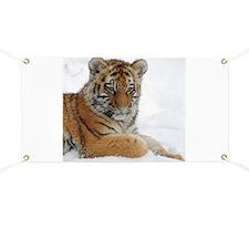 Tiger_2015_0104 Banner