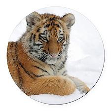 Tiger_2015_0104 Round Car Magnet