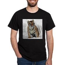 Tiger_2015_0111 T-Shirt