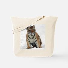 Tiger_2015_0111 Tote Bag