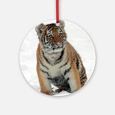Tiger_2015_0111 Ornament (Round)