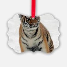 Tiger_2015_0111 Ornament