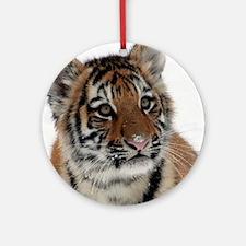 Tiger_2015_0113 Ornament (Round)