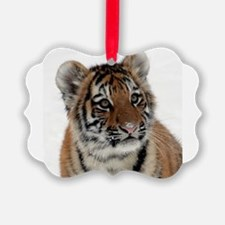 Tiger_2015_0113 Ornament