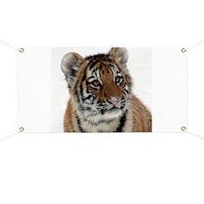 Tiger_2015_0113 Banner