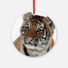 Tiger_2015_0114 Ornament (Round)