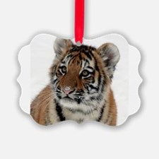 Tiger_2015_0114 Ornament