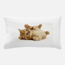 Orange kitten Pillow Case