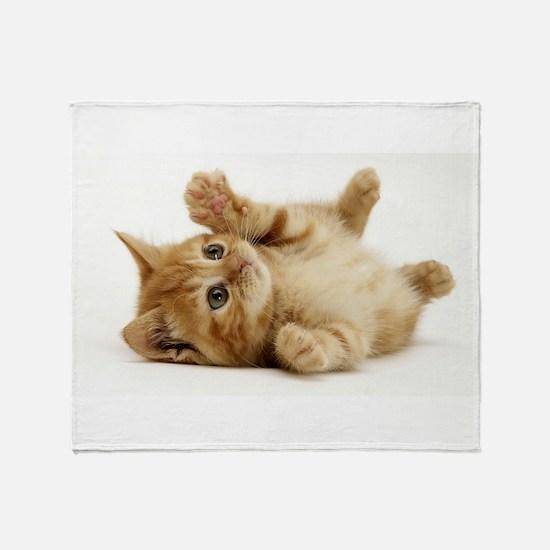 Orange kitten Throw Blanket