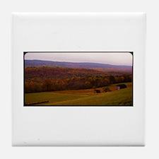 101214-78 Tile Coaster