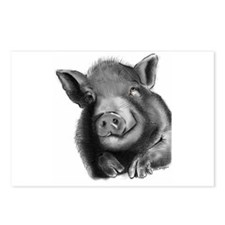 Lucy the wonder pig Postcards (Package of 8)