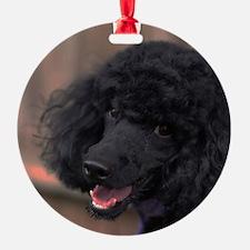 Unique Miniature poodles Ornament