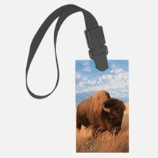 Bull Buffalo Luggage Tag