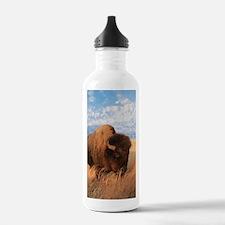 Bull Buffalo Water Bottle