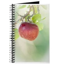 Red Apple Hanging Journal