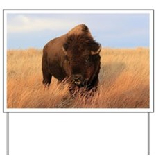 Bison on the plains Yard Sign