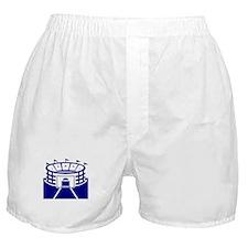 Blue Stadium Boxer Shorts