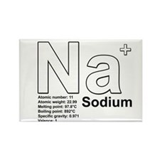 Sodium Rectangle Magnet