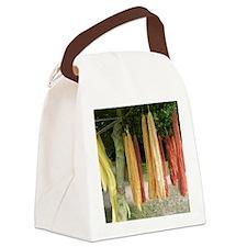 Unique Wool Canvas Lunch Bag