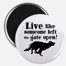 OPEN GATE Magnet