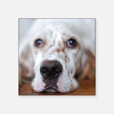 "Puppy dog Square Sticker 3"" x 3"""