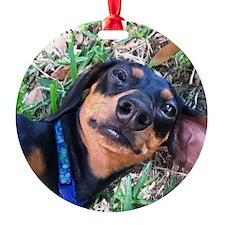 Milo Ornament