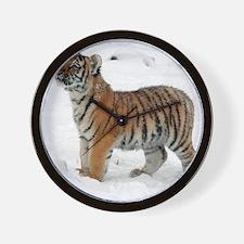 Tiger_2015_0118 Wall Clock