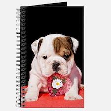 bulldogpuppy valentines.jpg Journal