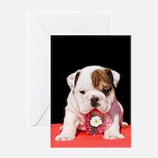 bulldogpuppy valentines.jpg Greeting Cards