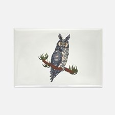 ABYSSINIAN OWL Magnets