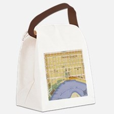 mardi84.png Canvas Lunch Bag