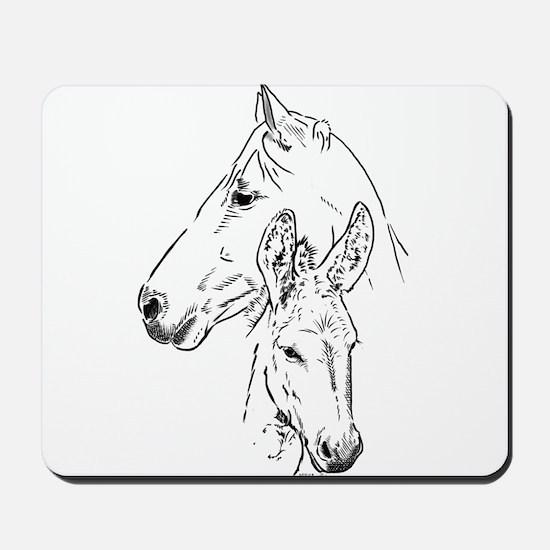 horse and mini donkey Mousepad