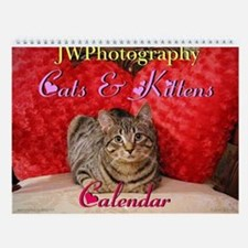 Cute Cats & Kittens Wall Calendar