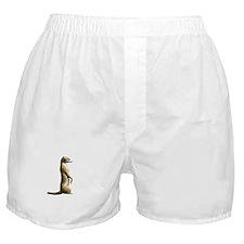 Meerkat Sitting Boxer Shorts