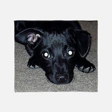 Black Chihuahua Throw Blanket