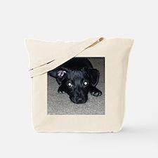 Black Chihuahua Tote Bag