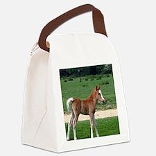 Funny Farm animals Canvas Lunch Bag