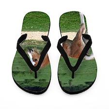 Funny Horses Flip Flops