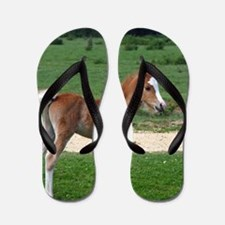 Cute Farm animal Flip Flops