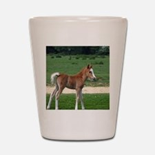 Funny Farm animals Shot Glass