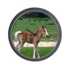 Foal out to pasture Wall Clock
