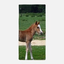 Foal out to pasture Beach Towel