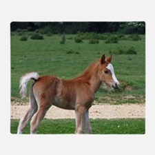 Foal out to pasture Throw Blanket